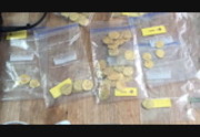 Diver Recovers Millions in Spanish Gold Coins Off Florida Coast