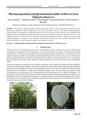 Pharmacognostical and phytochemical studies of flowers from Talipariti elatum S.w
