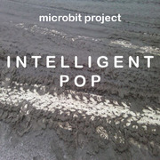 Microbit Project - Depressive Happiness