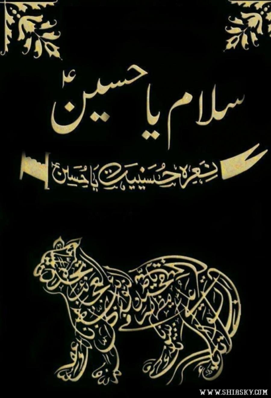 Naad-E-Ali A S  (Sagheer) : Sagheer : Free Download, Borrow