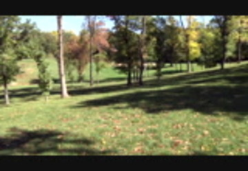 Oakwood Park In Cottage Grove Cottage Grove Free Download Borrow And Streaming Internet Archive