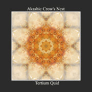 Akashic Crow's Nest - Torment Of The Metals