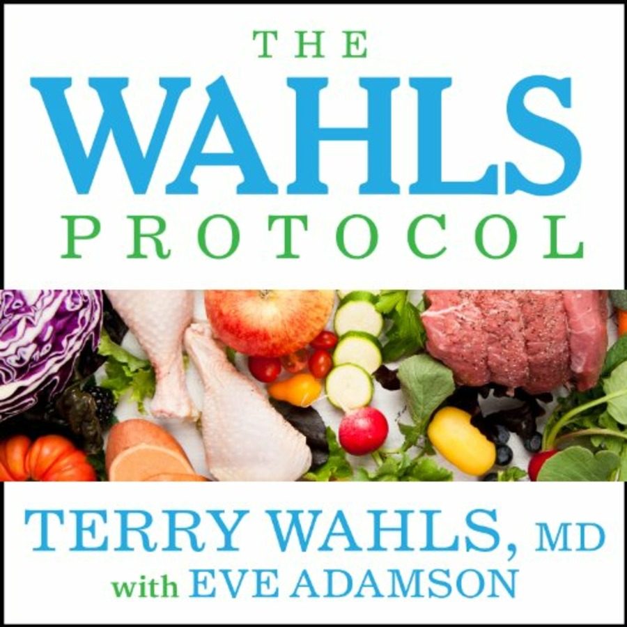 The Wahls Protocol : Free Download, Borrow, and Streaming