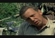 Bbc life in the undergrowth 720p torrent file
