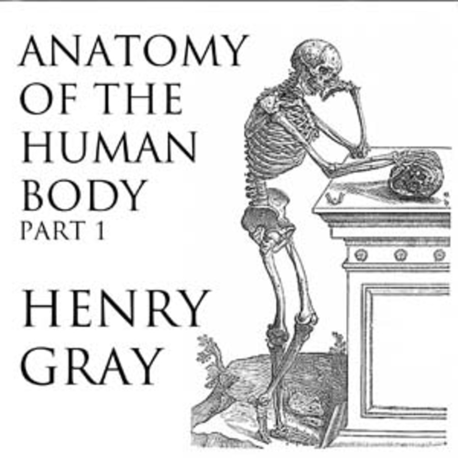 Anatomy of the Human Body, Part 1 : Henry Gray : Free