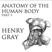 Anatomy Of The Human Body Part 3 Henry Gray Free Download
