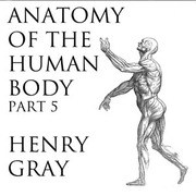 Anatomy Of The Human Body Part 5 Henry Gray Free Download
