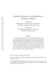 Quantum mechanics on manifolds and topological effects