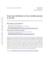 On jet mass distributions in Z jet and dijet processes at the LHC