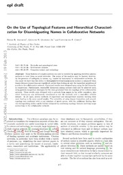On the use of topological features and hierarchical characterization for disambiguating names in collaborative networks
