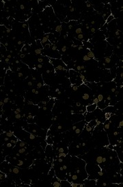 Aufsätze und Abhandlungen arabistisch-semitologischen Inhalts