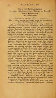 Vol 1921: Ein neues Brenthidengenus aus dem Naturhistorischen Museum zu Lubeck