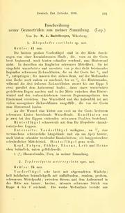 Vol 1908: Beschreibung neuer Geomotriden aus meiner Sammlung
