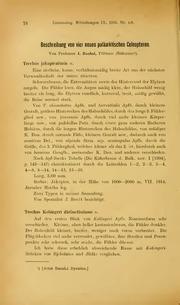 Vol 9: Beschreibung von vier neuen palaarktischen Coleopteren