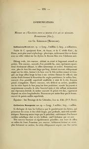 Vol 1914: Mission de l-Équateur pour la mesure d-un arc du méridien. Buprestides (Col.)