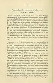 Vol 10: Peripatus belli espèce nouvelle de l-Equator