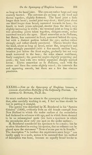 Vol 17: XXXIII.—Note on the synonymy of Huphina lanassa, a common Australian butterfly of the subfamily Pierinæ