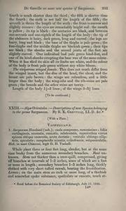 Vol 2: XXIII.—Algæ orientales:—Descriptions of new species belonging to the genus Sargassum