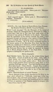 Vol 18: XXXVI.—On a new species of beech-Marten from Formosa