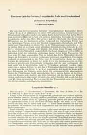 Vol 34: Eine neue Art der Gattung Langelandia Aube aus Griechenland Coleoptera, Colydiidae