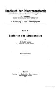 Bakterien und Strahlenpilze