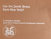 Can the South Bronx save Ne...