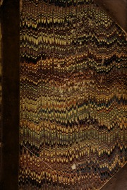 Catalogue of a collection of coins and medals, consisting of Greek, Roman, Saxon, and English, in gold, silver, and copper, the property of an elderly collector, [Turner of Gloucester], consigned from the country ... [04/15/1829]