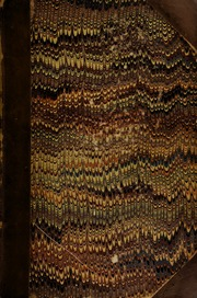 A catalogue of the very extensive collection of astronomical and philosophical instruments of the late William Walker. Esq., lecturer on the Eidouranion, (removed from his house at Hayes), comprising ... equatorials, theodolites, sextants, ... chronometers, ... barometers, thermometers, hygrometers, &c., also a few coins, ... with some paintings ... [06/06/1816]