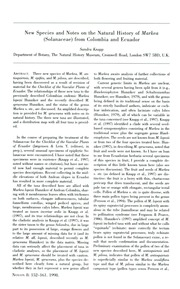 Vol v. 8 1998: Juanolleae