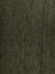 Der junge Dürer