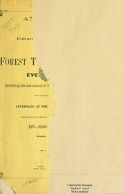 essay value of trees