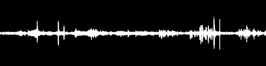 Grateful Dead Live at Fillmore East (Late Show) on 1970-02-13 : Free