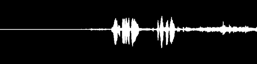 Grateful Dead Live at Fillmore West on 1969-02-28 : Free