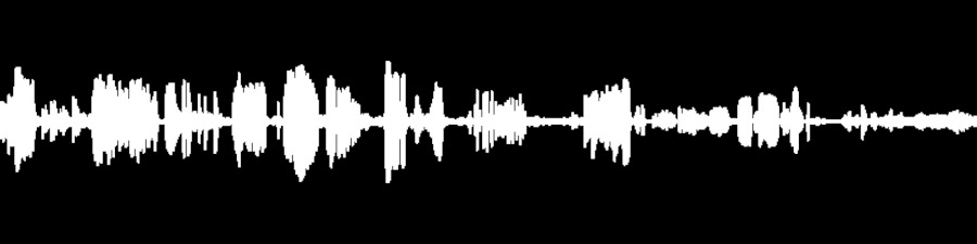 Grateful Dead Live at Harding Theater on 1971-11-07 : Free Download