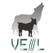 github com-Veil-Framework-Veil-Evasion_-_2017-04-20_12-21-44 : Veil