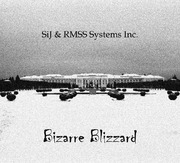 SiJ and RMSS Systems Inc. B.J.D V