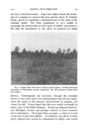 Vol 73: Yellow-White Pine Formation at Little Manistee, Michigan