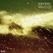 Laridae : Free Audio : Free Download, Borrow and Streaming