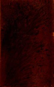 erasmus essay