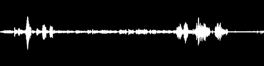 Matisyahu Live at The Black Box on 2019-01-26 : Free