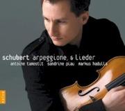 Arpeggione Sonata : Franz Schubert : Free Download ...