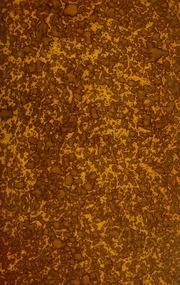 Metaphysik in der Psychiatrie : von P. Kronthal