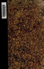 Nietzsche im Spiegelbilde seiner Schrift