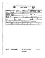 Police Report Palin family at drunken brawl.pdf PDFy mirror