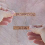 Bardoseneticcube - Tamayurakurage - Jenseits Von Gut Und Bose