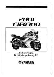 2006 Fjr Owners Manual