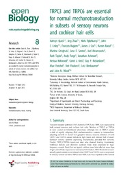 Noise-induced Outer Hair Cells' Dysfunction and Cochlear ...