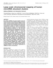 Vol 41: Large scale chromosomal mapping of human microRNA structural clusters.