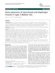 Vol 13: Gene expression of sternohyoid and diaphragm muscles in type 2 diabetic rats.