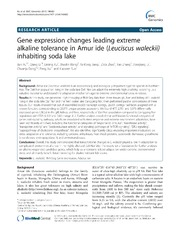 Vol 14: Gene expression changes leading extreme alkaline tolerance in Amur ide (Leuciscus waleckii) inhabiting soda lake.